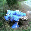 Flymapper fly tipping website and mobile app