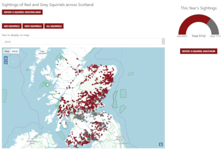 Saving Scotland's Red Squirrels - Developing Community Action Information Management System and Community Hub